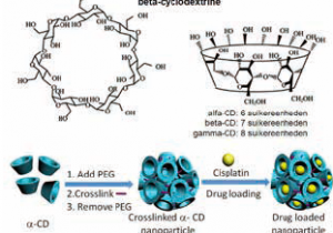 FIGUUR 3 | Cyclodextrinecomplex als nanocarrier
