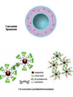 FIGUUR 4 | Curcumine liposoom en cyclodextrinecomplex