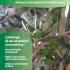 tijdschrift fytotherapie leververvetting
